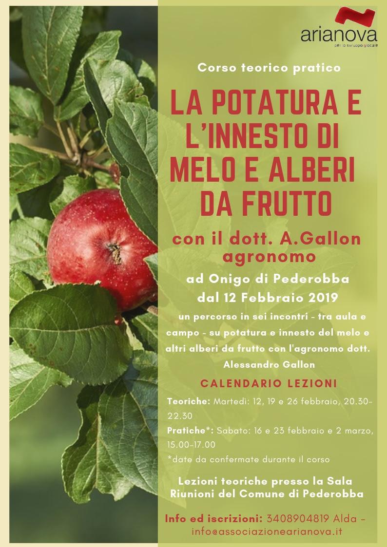 Foto Di Alberi Da Frutto corso teorico pratico di potatura ed innesto del melo e